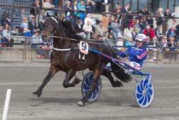 Millionær Jærvsørappen møter eldre hester i V76-3 på onsdag (foto: hesteguiden.com)