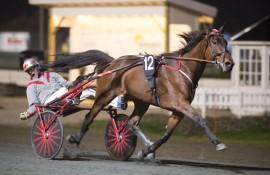Quagga vinner for sin trener Anders K Brekke  på Momarken (foto: hesteguiden.com)