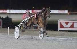 Er Jaccaroo og Bo Westergård tilbake på vinnersporet i V76-3 (foto: hesteguiden.com)
