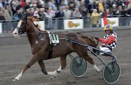 Åke Lindblom hadde mye gøy med råsterke Lugdunum (foto: hesteguiden.com)