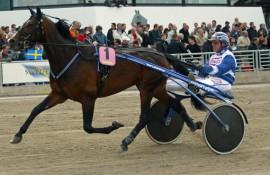 Tetglade Thomas Uhrberg styrer min banker i dag (foto: hesteguiden.com)
