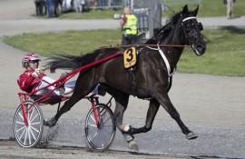 Peter Untersteiner (her bak B.B.S. Sugarlight) kjører to favoritter i dag (foto: hesteguiden.com)