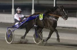 Blir Kolnes Tom og Kai Johansen den første fetodds-løp vinner i kveld? (foto: hesteguiden.com)