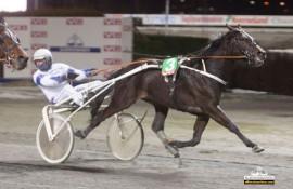 Kan Mymanyyouare vinne V76-finalen som heretter også er V4-4 sammen med Cato Antonsen på Bjerke onsdag (foto: hesteguiden.com)