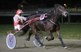 Stjerne Mai vinner sammen med Arne Nilsen på Leangen i 2012 (foto: hesteguiden.com)