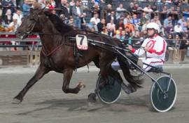 Tomeld Ø.K. og Bernt varmer opp før fjorårets Kriteriet på Bjerke (foto: hesteguiden.com)