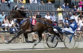 Broadway Legs er en av tre hester fra stallen til Frode Hamre i V76-6 onsdag (foto: hesteguiden.com)