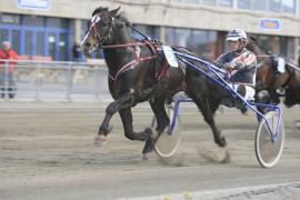 Fjord Jerven og Tor Wollebæk ladet opp til lørdagens herlige stayerløp med å vinne på 22.3/1660 volte på Leangen mandag (foto: hesteguiden.com)