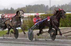 Smedheim Solan var sjanseløs mot Tomeld ØK og Åsbjørn Tengsareid sist – revansje på lørdag? (foto: hesteguiden.com)