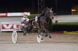 Seiersvante Bellfaks kommer fra Sverige for å vinne V76-finalen onsdag (foto: hesteguiden.com)