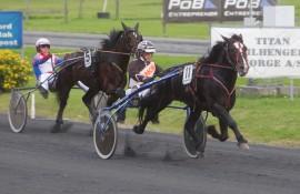 Runder Fjord Jerven til seier også i finalen av DNT's 5-års løp på Drammen lørdag? (foto: hesteguiden.com)