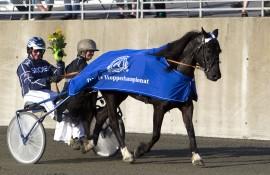 Knallgode Patsi og Øystein Tjomsland skal kvalifisere seg til Hoppe-Derby på Bjerke tirsdag kveld (foto: hesteguiden.com)