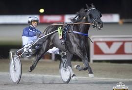 Premance Simoni er ei skikkelig tøff merr som jakter karrierens 30. seier (alle foto: hesteguiden.com)