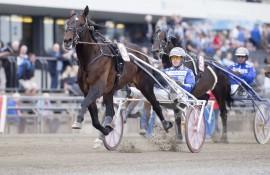 Castor Boko og Björn Goop gjorde et sterkt løp til annen mot Red Team Rex på Bjerke og blir favoritt i V4-3 (foto: hesteguiden.com)