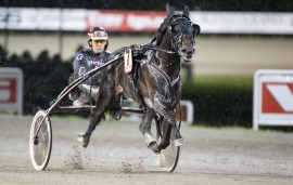 Det var herlig stil på Glen Ord Superb som blir Derbyfavoritt sammen med GV på Bjerke søndag (foto: hesteguiden.com)