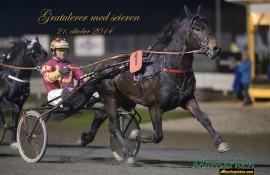 Kapable Mjølner Tore jakter karrierens femte seier, men hesten er ikke stø på beina (foto: hesteguiden.com)