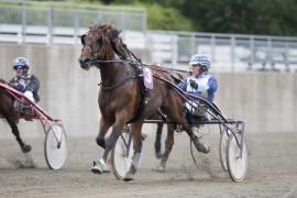 A Beautiful Cut svarte greit opp til seier for Tom Horpestad på Momarken i sommer (hesteguiden.com)
