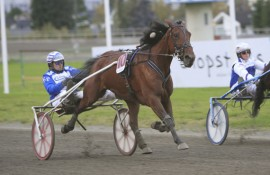 Fjerdevalget 10 Caprino B.R. spurtet inn til seier i V75-finalen på Leangen som vår glitrende banker (foto: hesteguiden.com)