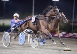 Innfrir Tarzan Simoni og Per Oleg Midtfjeld i V65-1 på Drammen mandag kveld? (foto: hesteguiden.com)