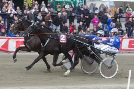 Får Vidar Hop og Sjø Kongen revansje på Kriterievinner Ingbest i 3-års Stjernen onsdag? (foto: hesteguiden.com)