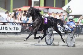 Daniel Redèns Daley Lovin blir storfavoritt i Axel Jensens Minneløp på lørdag  – her sammen med Erik Adielsson på Jarlsberg i sommer (foto: hesteguiden.com)