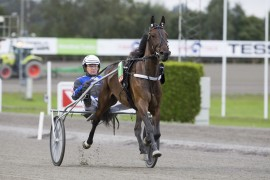 La Reina var med i årets hoppederby sammen med Pål Buer – i dag er det adskillig enklere motstand (foto: hesteguiden.com)