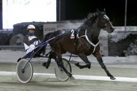Selvom Avery og Eirik Høitomt blir megafavoritter ser jeg ingen grunn til å ikke bankertippe 5-åringen i V75-4 (foto: hesteguiden.com)