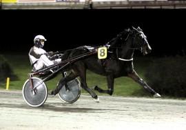 Love Lloyd i herlig strekk for Eirik Høitomt – den femte strake seieren bokføres ventelig i V75-2 (foto: hesteguiden.com)