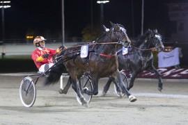 Mjølner Komet og Jan Roar Mjølnerød kommer fra fersk V75-seier i Sverige og blir millionær om han tar sin tredje strake seier i V76-6 på Bjerke onsdag (foto: hesteguiden.com)