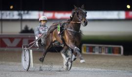 Spurter stilige Raymond Palema og Eirik Høitomt til sjokkseier i V76-3 (begge foto: hesteguiden.com)