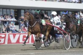 Kan Tron Gravdal og 3 Hermine se seg tilbake også etter V75-2 i dag? (foto: hesteguiden.com)