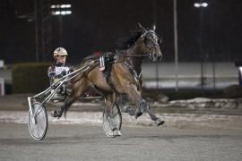 Nolessthanperfect hadde null konkurranse tross bakspor og dødens ved forrige hovedstadbesøk – reprise i kveld? (foto: hesteguiden.com)