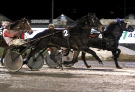 Setter Thor Borg inn en Stjerne Smell i V76-1 på Bjerke onsdag? (foto: hesteguiden.com)