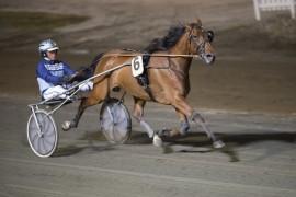 Denise F. Boko og Frode Hamre blir bankerspilt i Norge, men kun knapp favoritt blant de svenske spillerne (foto: hesteguiden.com)