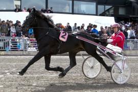 Månprinsen A.M. er et herlig skue i banen – her med fast følgesvenn Gunnar Melander på Solvalla i fjor (begge foto: hesteguiden.com)