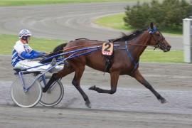 Fjerdevalget Marchetti og Hans Wilhelm Storås har en fin oppgave foran seg i V75-5 i dag (foto: hesteguiden.com)