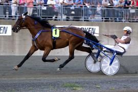 Jeg satser på at Rafolo leder helt hjem sammen med Eirik Høitomt i V75-4 på Momarken i dag (foto: hesteguiden.com)