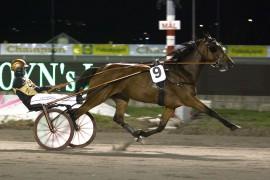 Uten tull tror jeg Simen B. Jessens Rose Garden bokfører sin 10. karriereseier (foto: hesteguiden.com)