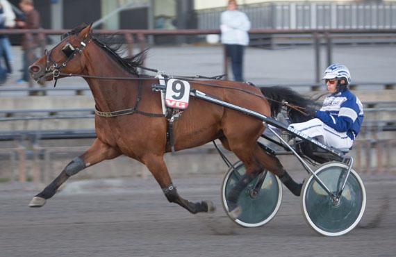 Step Down og Svein Ove Wassberg bør ha gode muligheter i V76-1 i kveld.