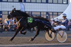 Kjempen løpsdebuterte med å vinne på 29.3 full vei på Jarlsberg i 2014 – tar han sin første seier etter skadeavbrekk i dag? (foto: hesteguiden.com)