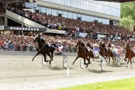 Topp sport og stor stemning venter på Solvalla kommende helg (foto: hesteguiden.com)