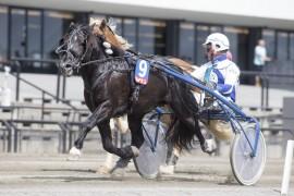 Tar Kossar og Hans Christian Holm ta seg av V76-3 som et tredjevalg i dag? (foto: hesteguiden.com)
