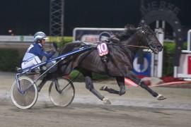El Diablo B.R. imponerte i kvalifiseringen og blir Derbyfavoritt sammen med sin trener Frode Hamre søndag (foto: hesteguiden.com)