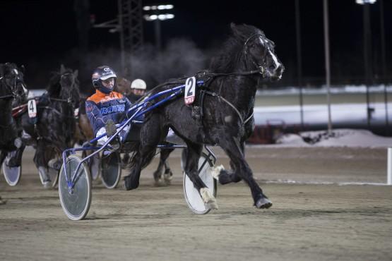 Slik så det ut da Smedtulla tok sin hittil siste seier – tross sin sedvanlige galopp slo hun gode hester på Bjerke i januar (foto: hesteguiden.com)