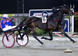 Forsvarer 6 Patricia Hastrup favorittstempelet i den doble jackpotomgangen i V65-finalen i Drammen mandag? (foto: hesteguiden.com)