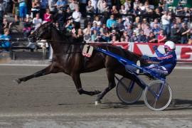 Det var fantastisk stil på Ivar Sånna på Bjerke sist – kjører Jomar til direkte og ærer Kniksen på lekent vis? (begge foto: hesteguiden.com)