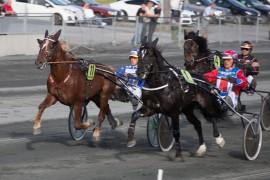 Tysvær Loke slipper å møte Teddy Gutten Støen denne gang – jeg tror på ny V75-seier i dag (foto: hesteguiden.com)