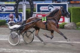 Amazing S.H. og Herman Tvedt har en perfekt oppgave på Bjerke i kveld (foto.: hesteguiden.com)