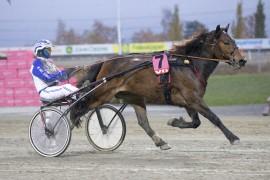 Arnspik og Vidar Hop utklasset konkurrentene i V75 på Bjerke sist – reprise i V76-finalen onsdag? (foto: hesteguiden.com)