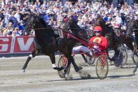 Cruzado Dela Noche og Björn Goop vant enkelt på OGP-søndagen – lørdag blir Melander-traveren favoritt i Axel Jensens Minneløp (foto: hesteguiden.com)